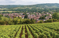 Entreprises, producteurs, fabricants de la région Bourgogne avec Kompass, l'annuaire mondial des entreprises.
