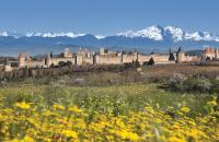 Entreprises, producteurs, fabricants de la région Languedoc-Roussillon avec Kompass, l'annuaire mondial des entreprises.