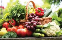 Entreprises, producteurs, fabricants du secteur d'activité de l'agroalimentaire en France et dans le monde de la base de données Kompass